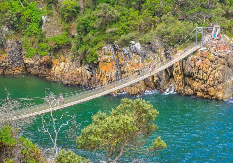 Suspension bridge South Africa RF