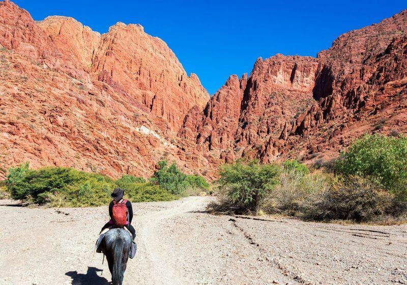 Horse ride woman RF
