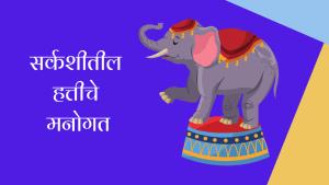 सर्कशीतील हत्तीचे मनोगत मराठी निबंध | Autobiography of Circus Elephant Essay in Marathi
