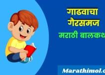 गाढवाचा गैरसमज – मराठी बोधकथा  Donkey's Misunderstanding Story In Marathi