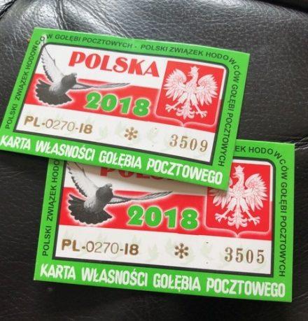 Dagboek van een duivenmelkster (6) … Poolse duivenlossingen in Ede