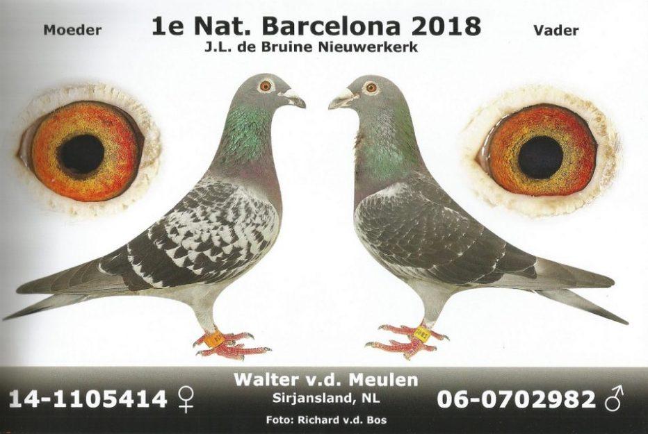 Walter (PWA) van der Meulen, Sirjansland,  Barcelona-topper van Nederland