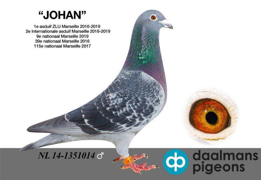 Topper van 2019 … 'Johan' van Theo Daalmans