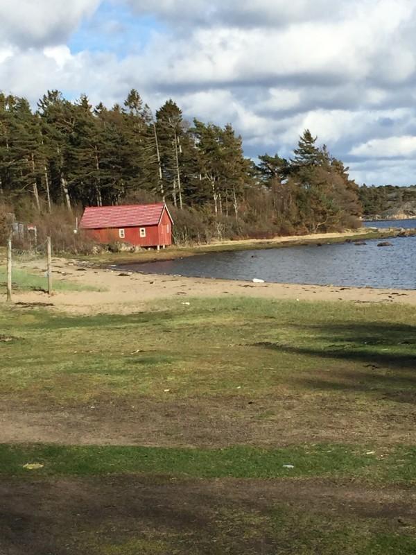 Inte många på stranden på Valborg. 7 grader och blåsigt. Foto: privat