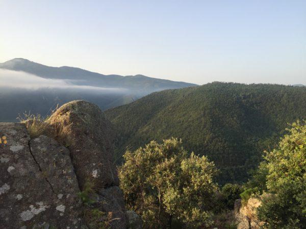 På ett berg över molnen. Foto: privat
