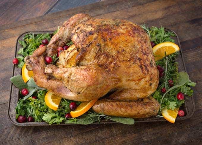Thanksgiving turkey on bed of greens with cranberries and orange slices.