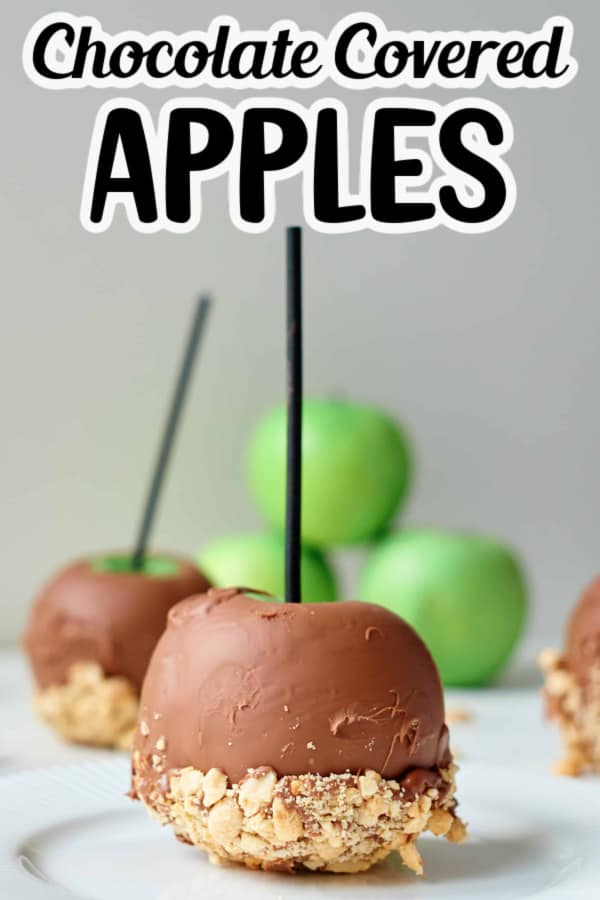 Chocolate Covered Apple Pin