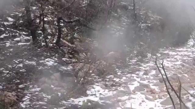 Neve no Gerês