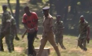 Malawian man in Lilongwe arrested for defiling an imbecile