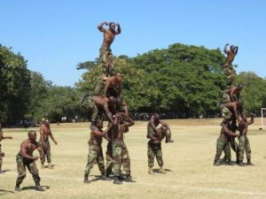 Malawi Defence Force soldiers manning Chikangawa forest