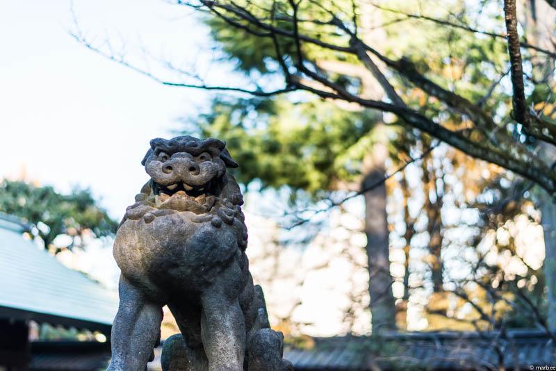 根津神社 狛犬