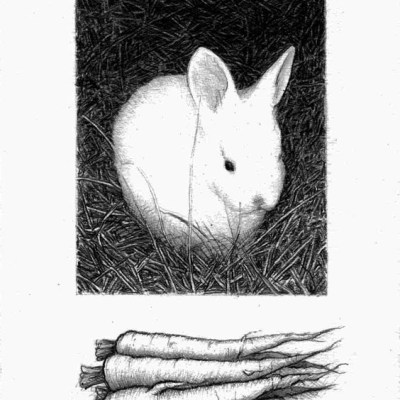 Bunny with Carrots, Pencil on Paper, 14cm by 10cm. (2010)