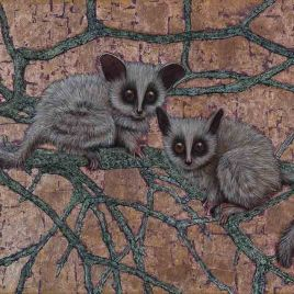 "Bush Babies by Marc Alexander from his ""In The Balance' series, oil and bronze lLeaf on canvas, 40cm by 50cm. (2015)."