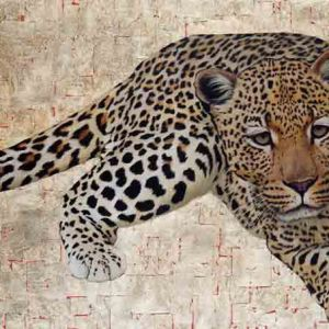 Leopard #1, oil and gold leaf on canvas, 80cm by 100cm, (2011).