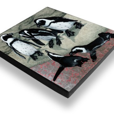 African Penguins – Archival Canvas Print Stretched