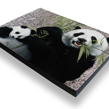 Giant Pandas – Archival Canvas Print Stretched