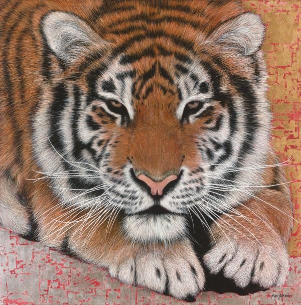 Marc Alexander | Siberian Tiger