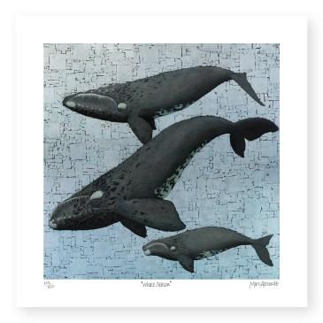 Whale Season – Archival Paper Print