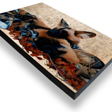 Wild Dogs I – Archival Canvas Print Stretched