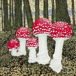 Marc-Alexander | Magic Mushrooms | The Secret Forest Exhibition