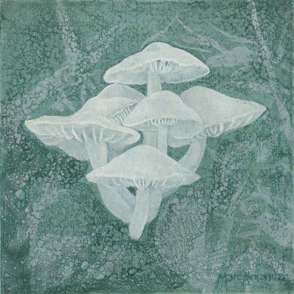 Marc Alexander | Mushrooms I | The Secret Forest Exhibition