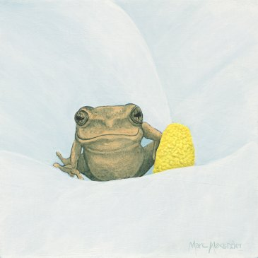 Marc Alexander | Reed Frog I | The Secret Forest Exhibition
