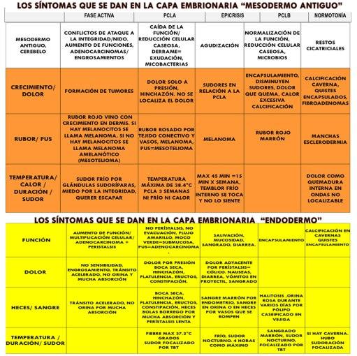 """""""LOS VECTORES""""  HERRAMIENTA DE MARCO PFISTER"""
