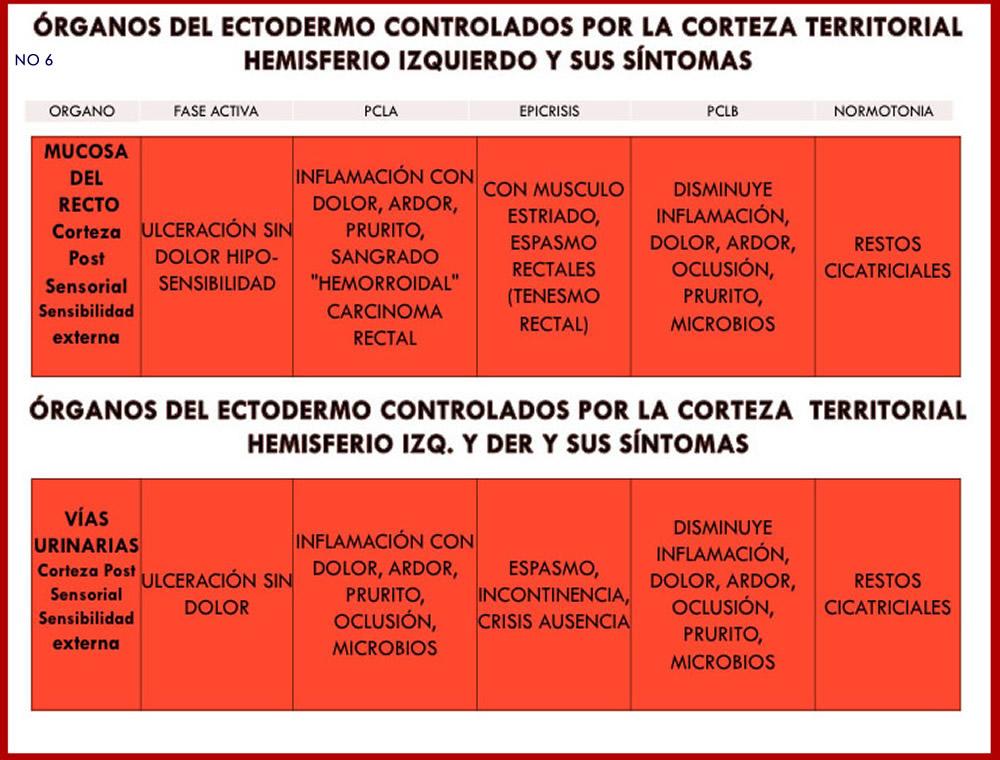 ORGANOS Y SUS SINTOMAS 6
