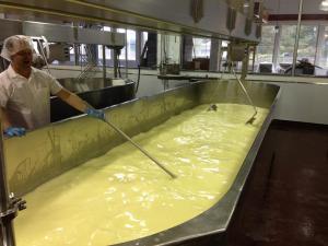 Brad Sinko, Cheesemaker