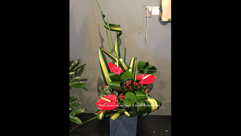 Saint Valentin Le March Aux Fleurs