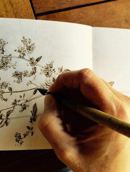 Gioia Marchegiani - Breve storia di un raccolto