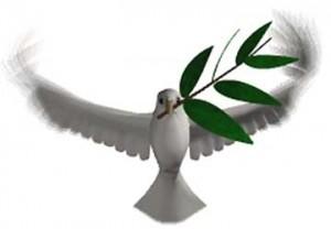 colomba-della-pace-300x208