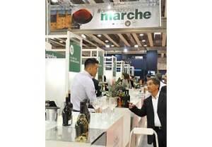vinitaly-2013-marche1