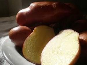 patata_rossa_colfiorito