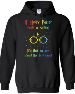 If Harry Taught Us Anything Hoodie