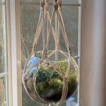 Diy Macrame Hanging Terrarium Tutorial Video Marching North