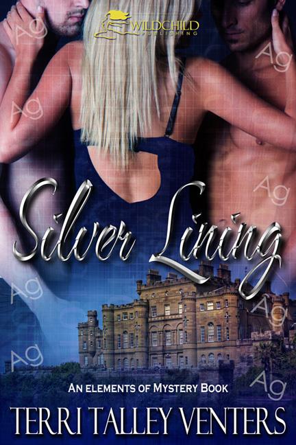 Silver Lining by Terri Talley Venters, contemporary romantic suspense