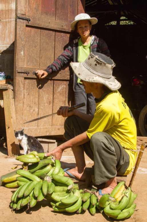 Thailandia & Laos 153