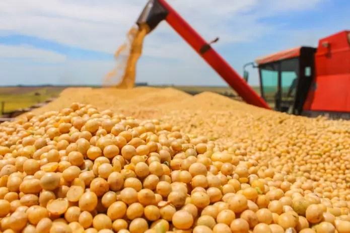 Preço da soja bate recorde em Paranaguá e fecha acima de R$ 138