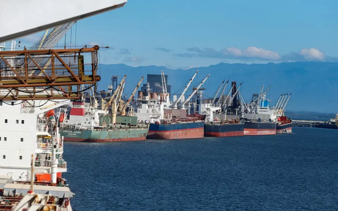 Ports of Paraná had the best semester in history in terms of handling