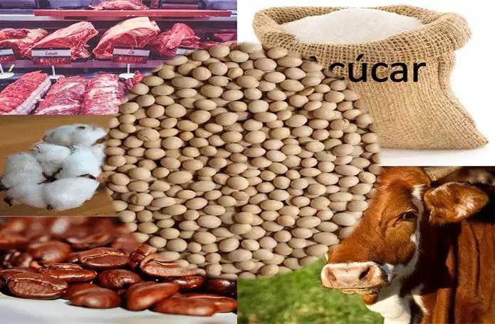 Safra de grãos chegará a 333 milhões de toneladas em dez anos, projeta estudo do Mapa