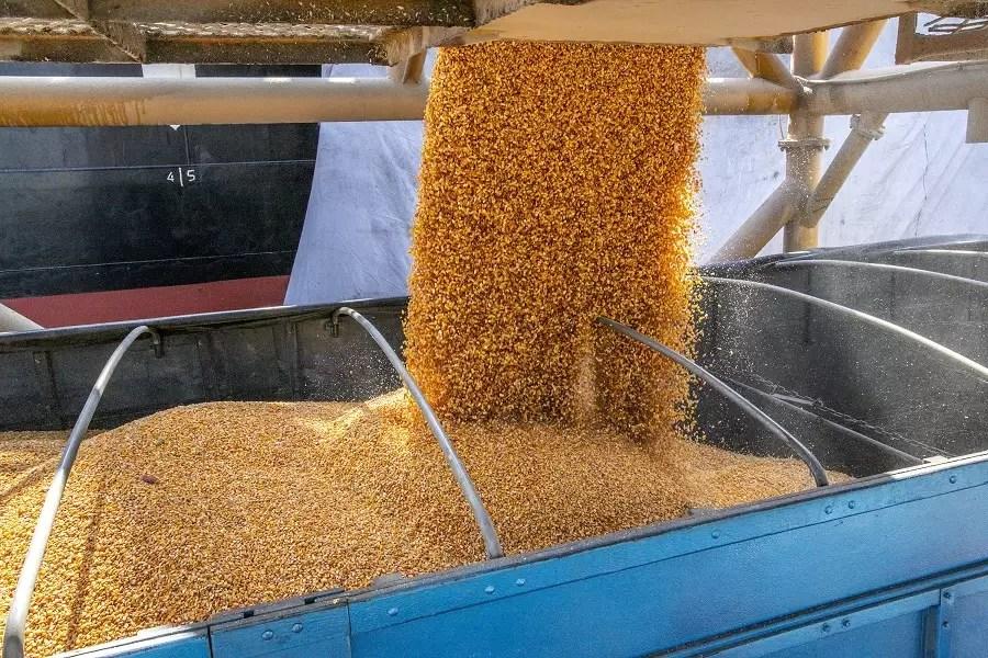 Porto de Paranaguá recebe mais uma carga de milho de importação
