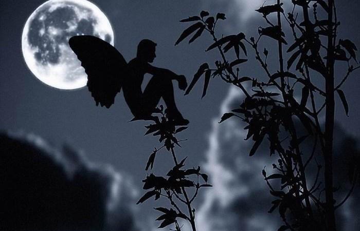 La notte….