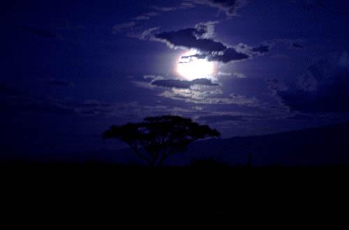 https://i2.wp.com/www.marcosanti.it/Reportage/Africa_ph/Tanzania/Tanzania_notte_g.jpg