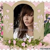 Marcos de fotos de ventana con flores