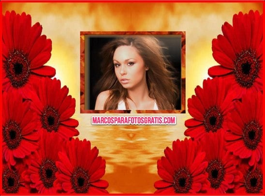 marco de flores rojas para fotos