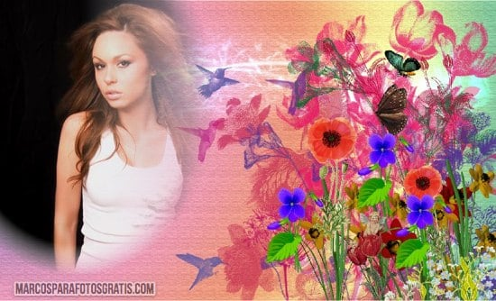 marcos para fotos con flores y colibries