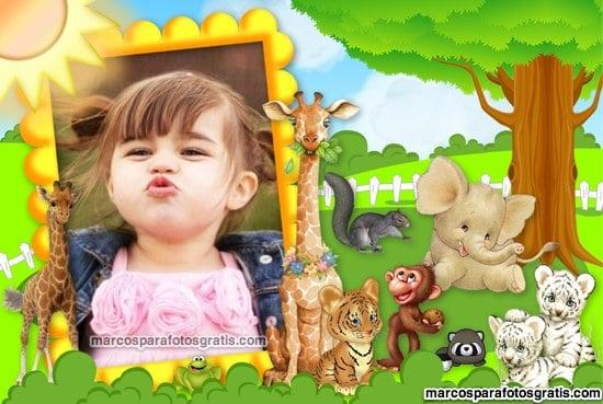 marcos para fotos infantiles de animalitos de la selva