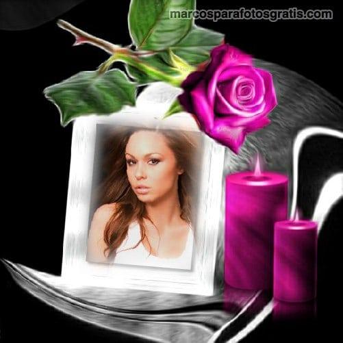 marcos para fotos con rosas