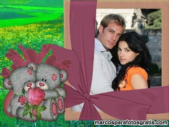 marco con ositos enamorados y rosa